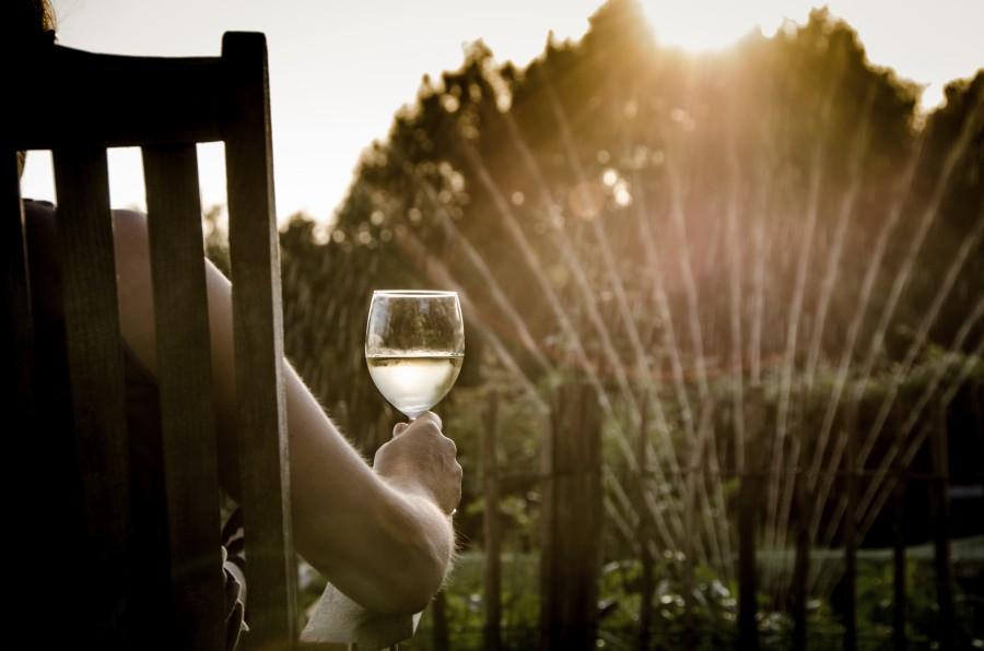 Summer evening, drinking wine