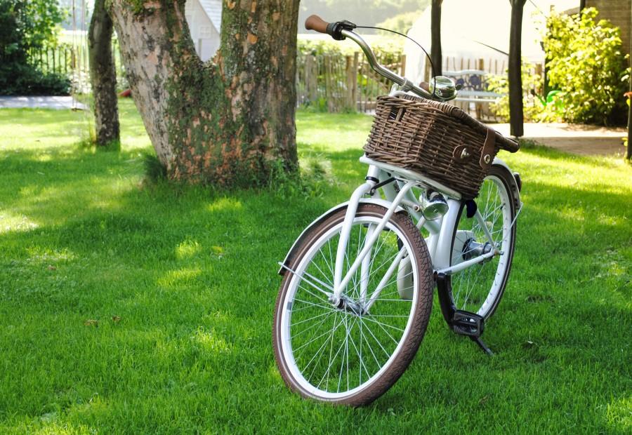 Transport bike for kids