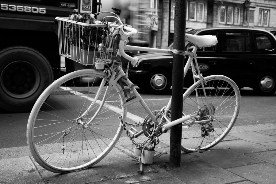 Albino bicycle