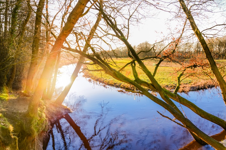 Nature in Drenthe