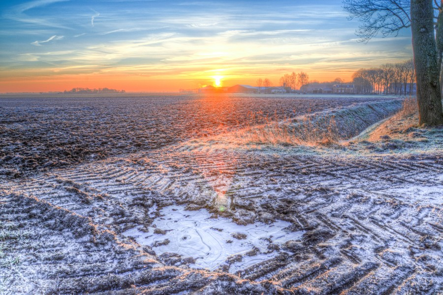 Cold sunrise at a field