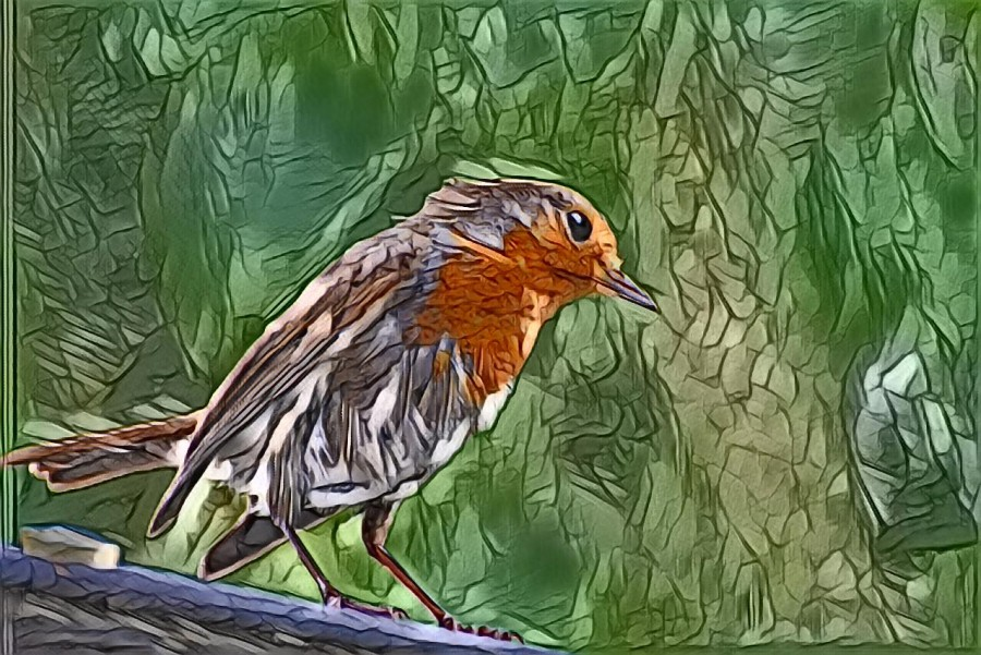 Painted bird on a branch