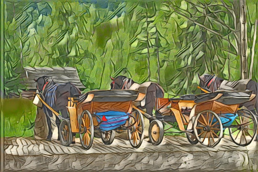 Painted carriages