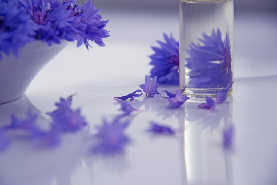 Cosmetic Oil and Cornflower Flowers