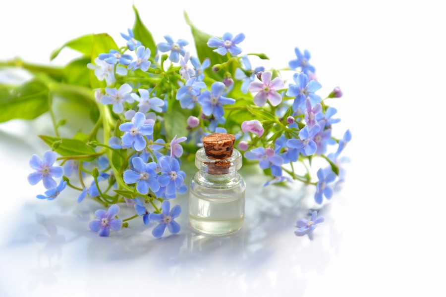 Essential oil and forget-me-nots