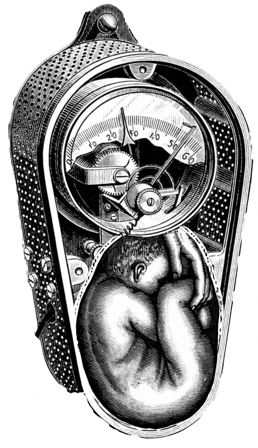 clockwork uterus