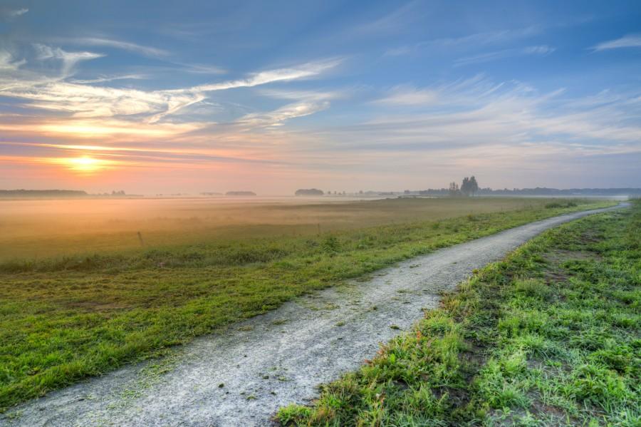 Foggy bicycle path