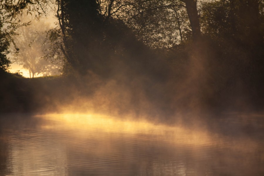 Mist on early morning lake