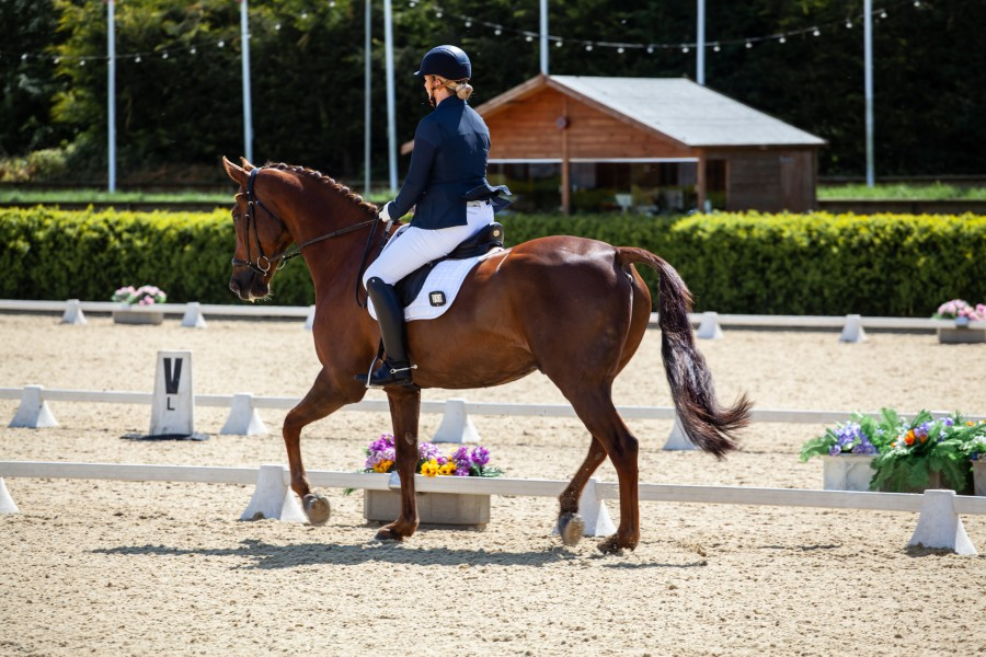 Dressage rider in ring