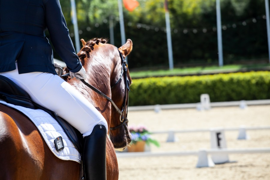 Dressage rider about to enter ring