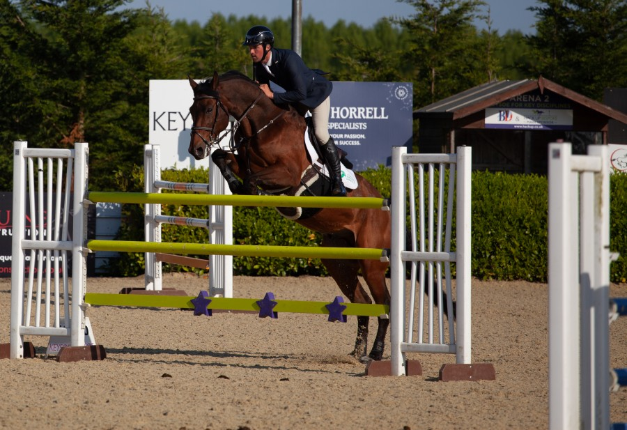 Horse jumping over green bars